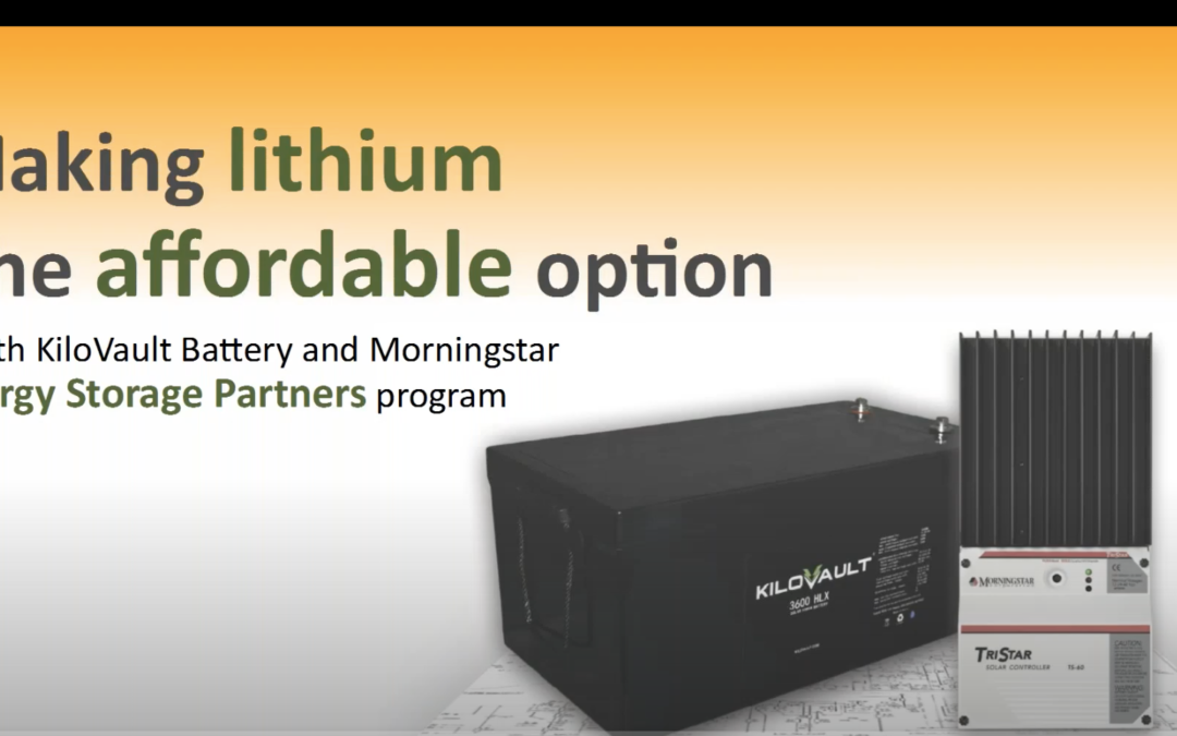 Making lithium the affordable option